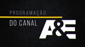 Canal A&E ganha divulgação a pedido de Silvio Santos (foto: Reprodução/SBT)