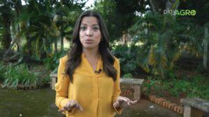 Luísa Nogueira é a apresentadora do Play no Agro, o Globo Rural da Band (foto: Reprodução)